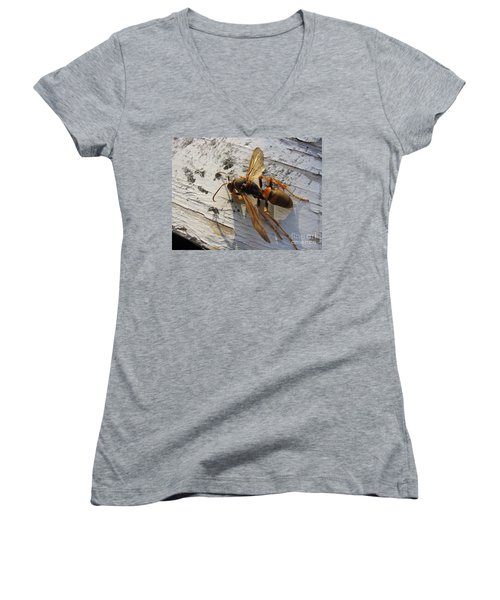 Apache Red Wasp Women's V-Neck T-Shirt