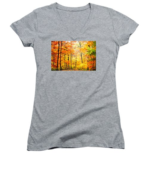 Women's V-Neck T-Shirt (Junior Cut) featuring the photograph Autumn Forest by Randall Branham