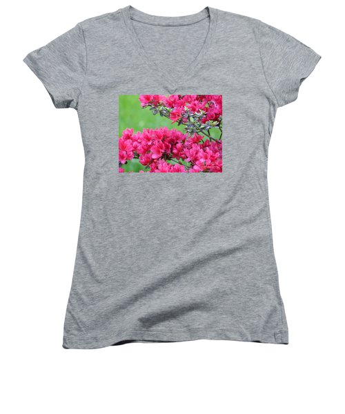 Women's V-Neck T-Shirt (Junior Cut) featuring the photograph Azalea by Andrea Anderegg