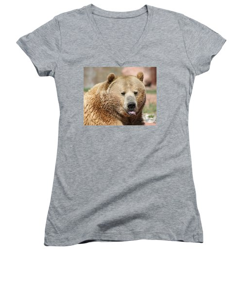 Bear Rasberry Women's V-Neck T-Shirt (Junior Cut) by Living Color Photography Lorraine Lynch