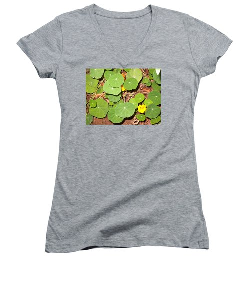 Beautiful Round Green Leaves Of A Plant With Orange Flowers Women's V-Neck T-Shirt (Junior Cut)
