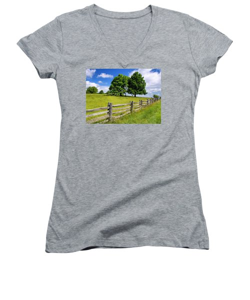 Beautiful Virginia Pasture Women's V-Neck (Athletic Fit)