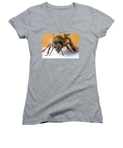 Bee In Macro 4 Women's V-Neck T-Shirt