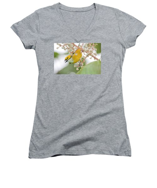 Bird With Berry Women's V-Neck (Athletic Fit)