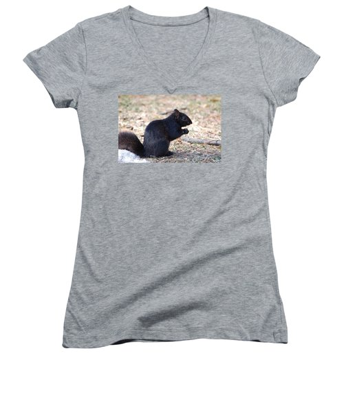 Black Squirrel Of Central Park Women's V-Neck T-Shirt (Junior Cut) by Sarah McKoy