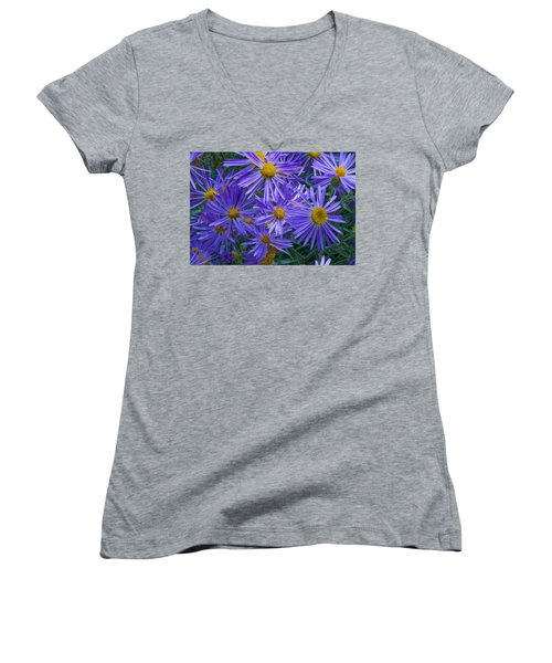 Blue Asters Women's V-Neck (Athletic Fit)