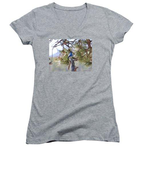 Blue Boy Women's V-Neck T-Shirt