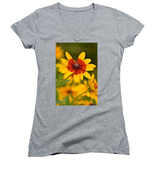 Women's V-Neck T-Shirt (Junior Cut) featuring the photograph Blush-eyed Susan by JD Grimes