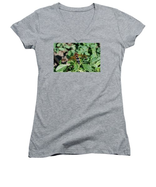 Women's V-Neck T-Shirt (Junior Cut) featuring the photograph Break Time by Thomas Woolworth