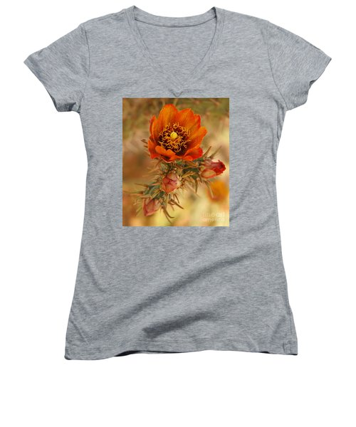 Buckhorn Cholla 2 Women's V-Neck T-Shirt (Junior Cut) by Vivian Christopher