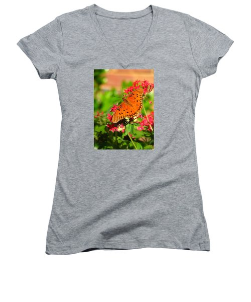 Butterfly On Pentas Women's V-Neck T-Shirt (Junior Cut) by Carla Parris