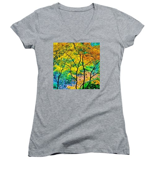Canopy Of Life Women's V-Neck (Athletic Fit)