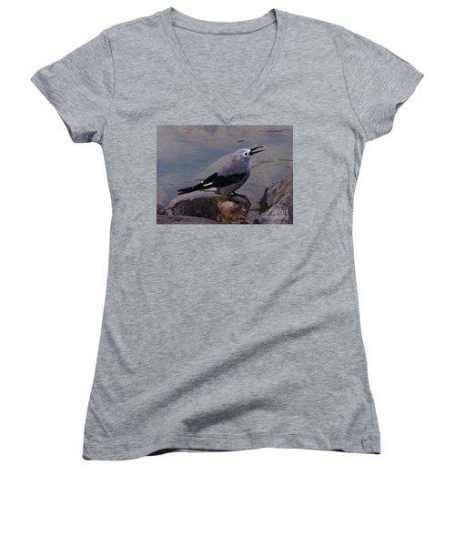 Women's V-Neck T-Shirt (Junior Cut) featuring the photograph Clark's Nutcracker by Cheryl Baxter