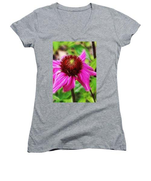 Coneflower Women's V-Neck T-Shirt (Junior Cut) by Judi Bagwell
