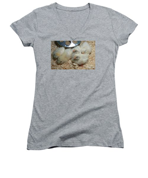 Women's V-Neck T-Shirt (Junior Cut) featuring the photograph Cute And Fuzzy Chicks by Chalet Roome-Rigdon