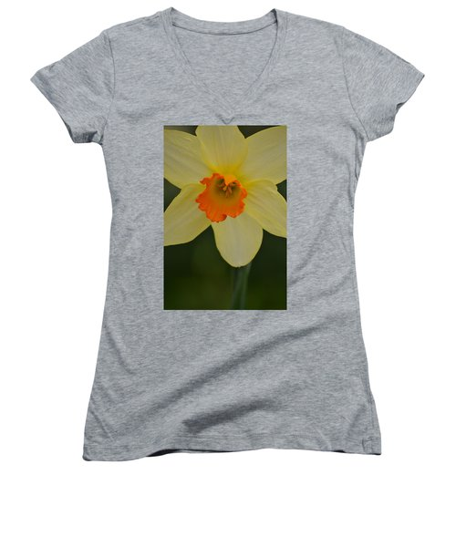Daffodilicious Women's V-Neck T-Shirt (Junior Cut)