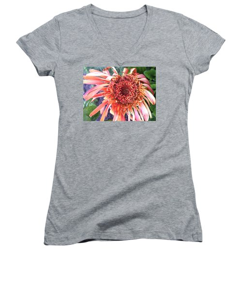 Daisy In The Wind Women's V-Neck T-Shirt