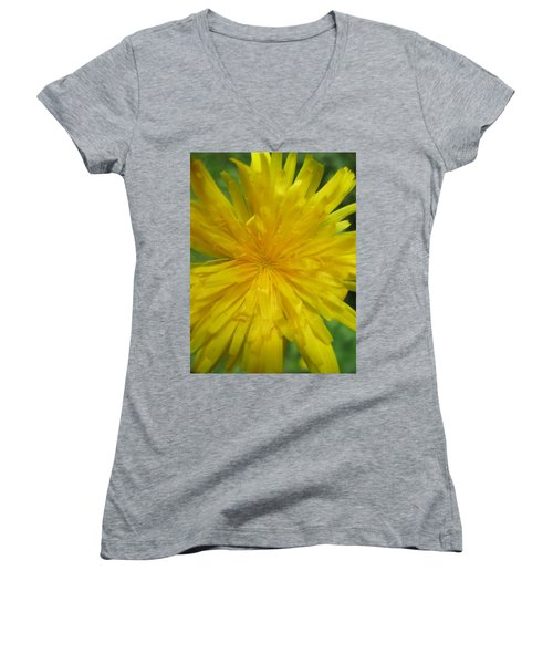 Women's V-Neck T-Shirt (Junior Cut) featuring the photograph Dandelion Close Up by Kym Backland