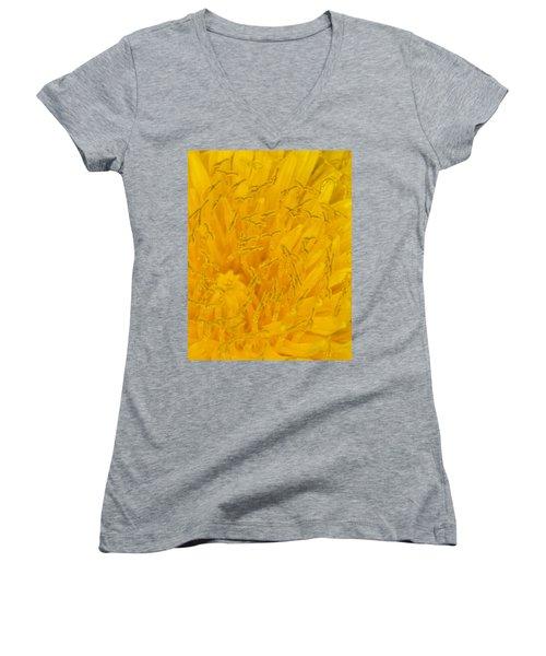 Dandelion Up Close Women's V-Neck T-Shirt