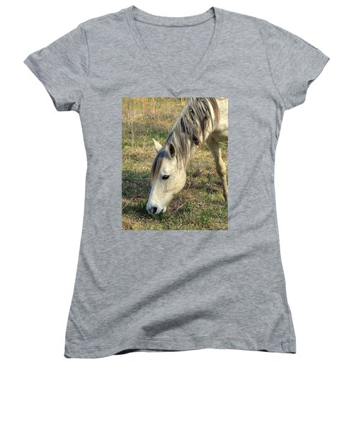 Women's V-Neck T-Shirt (Junior Cut) featuring the photograph Dinner Time by Marty Koch