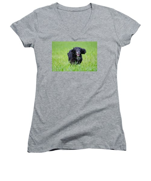Dog Running On The Green Field Women's V-Neck