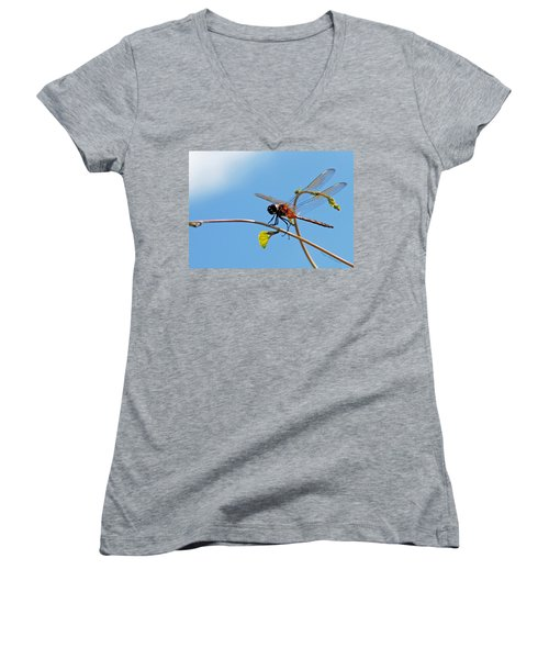 Women's V-Neck T-Shirt (Junior Cut) featuring the photograph Dragonfly On A Vine by Kay Lovingood