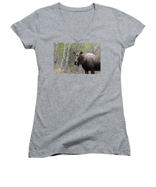 Women's V-Neck T-Shirt (Junior Cut) featuring the photograph Early Spring by Doug Lloyd
