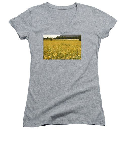 Field Of Yellow Daisy's Women's V-Neck (Athletic Fit)