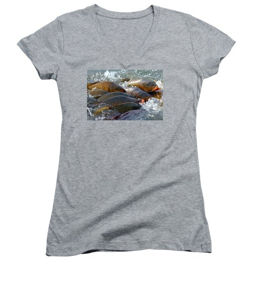 Women's V-Neck T-Shirt (Junior Cut) featuring the photograph Fishing And Hunting by Elizabeth Winter