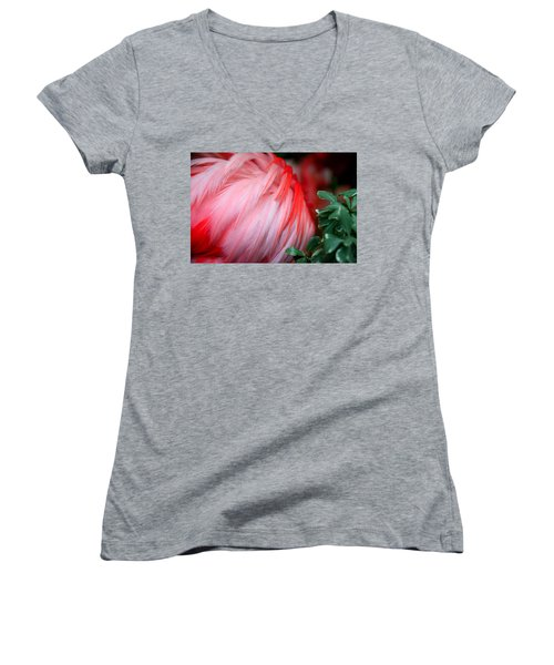 Women's V-Neck T-Shirt (Junior Cut) featuring the photograph Flora And Fauna Number One by Lon Casler Bixby