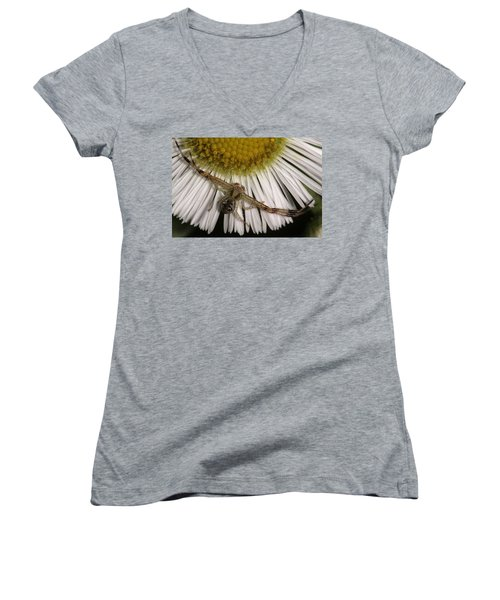 Women's V-Neck T-Shirt (Junior Cut) featuring the photograph Flower Spider On Fleabane by Daniel Reed