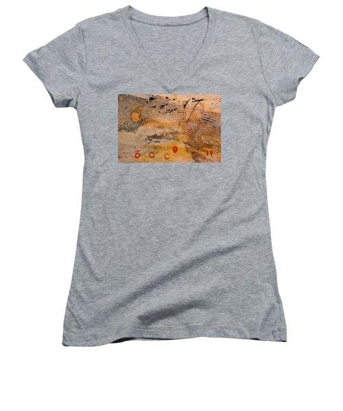 Flying Crane Women's V-Neck T-Shirt