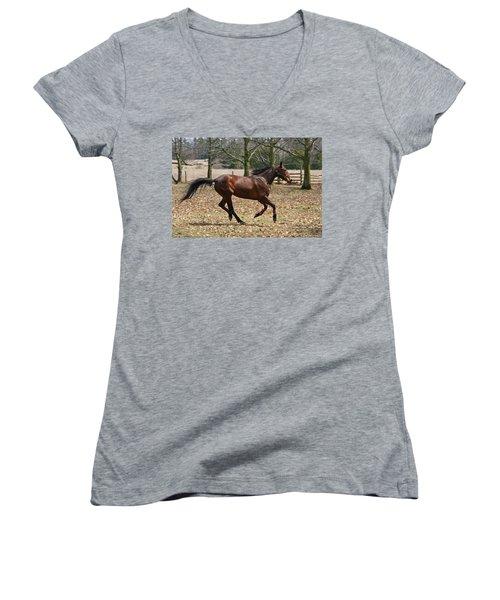 Women's V-Neck T-Shirt (Junior Cut) featuring the photograph Free Spirit by Davandra Cribbie