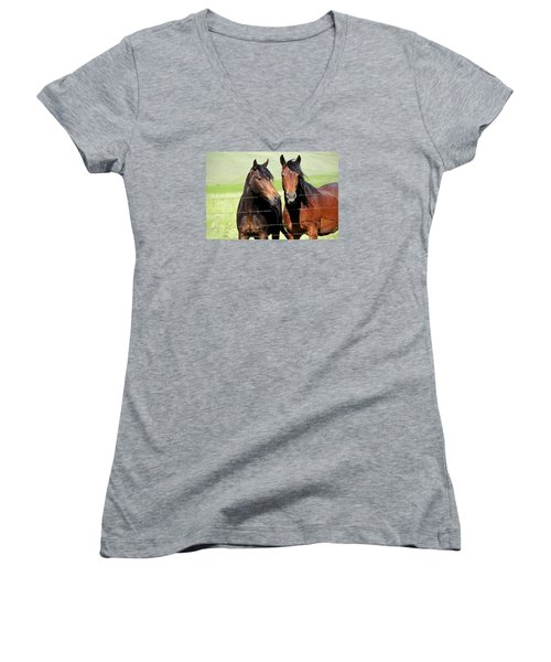 Women's V-Neck T-Shirt (Junior Cut) featuring the photograph Friends by Fran Riley