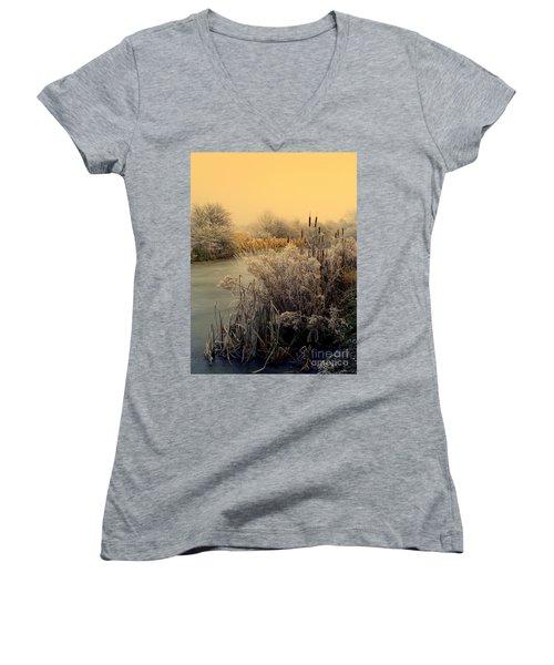 Frost Women's V-Neck T-Shirt