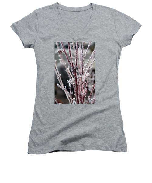 Women's V-Neck T-Shirt (Junior Cut) featuring the photograph Frosty Coral Maple by Mick Anderson