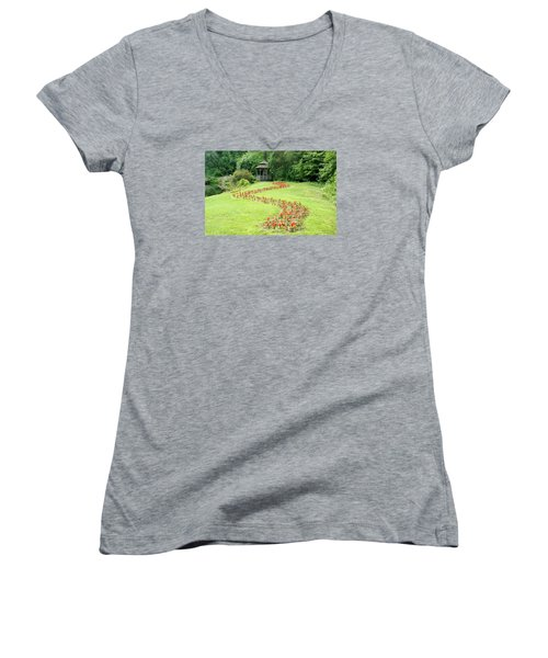 Gazebo Women's V-Neck T-Shirt