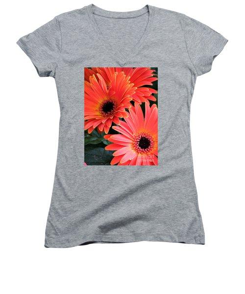 Gerbera Bliss Women's V-Neck T-Shirt (Junior Cut) by Rory Sagner