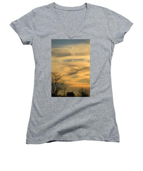 Golden Hue Women's V-Neck T-Shirt