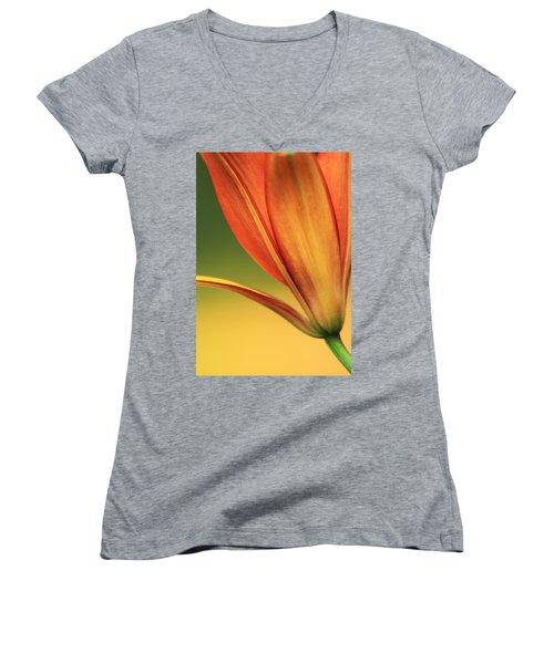 Graceful Women's V-Neck T-Shirt