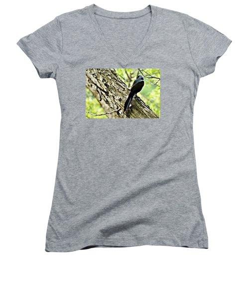 Grackle 1 Women's V-Neck T-Shirt (Junior Cut) by Joe Faherty