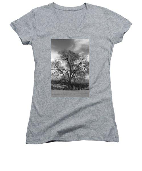 Grand Canyon Life Tree Women's V-Neck T-Shirt