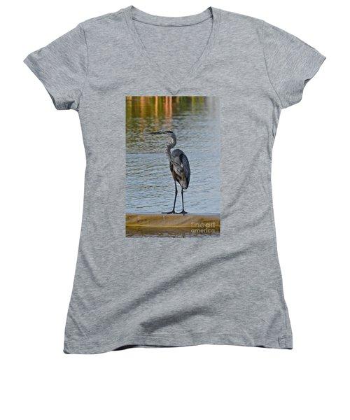 Women's V-Neck T-Shirt (Junior Cut) featuring the photograph Great Blue Heron by Carol  Bradley