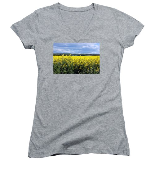 Hay Fever Women's V-Neck T-Shirt (Junior Cut) by Rdr Creative