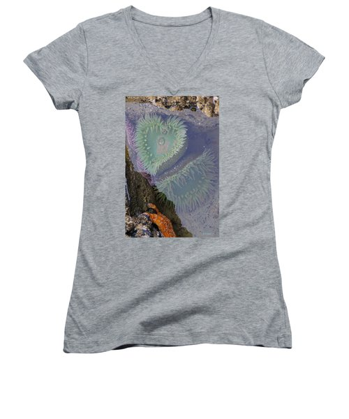 Heart Of The Tide Pool Women's V-Neck T-Shirt (Junior Cut) by Mick Anderson