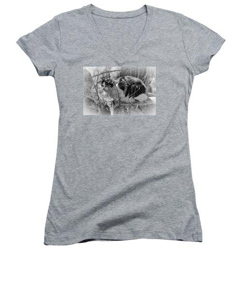 Women's V-Neck T-Shirt (Junior Cut) featuring the photograph Hiding by Eunice Gibb