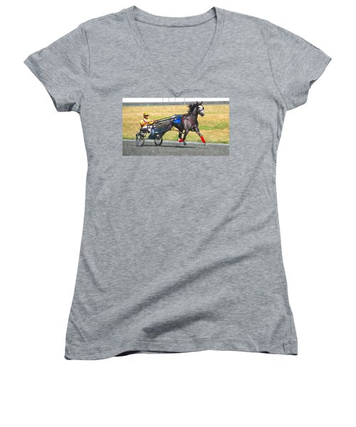 Women's V-Neck T-Shirt (Junior Cut) featuring the photograph Hooray For The Gray by Alice Gipson
