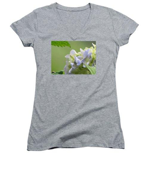 Hydrangea Blossom Women's V-Neck T-Shirt