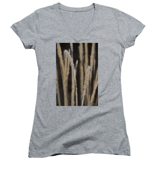 Women's V-Neck T-Shirt (Junior Cut) featuring the photograph Ice Crystals On Tall Grass by Mick Anderson