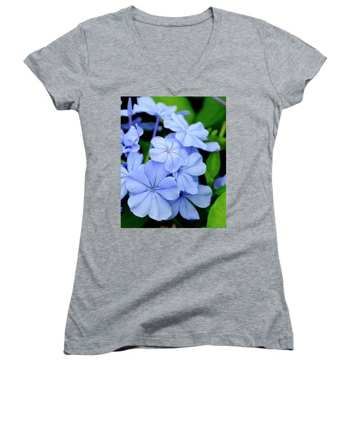 Imperial Blue Women's V-Neck T-Shirt